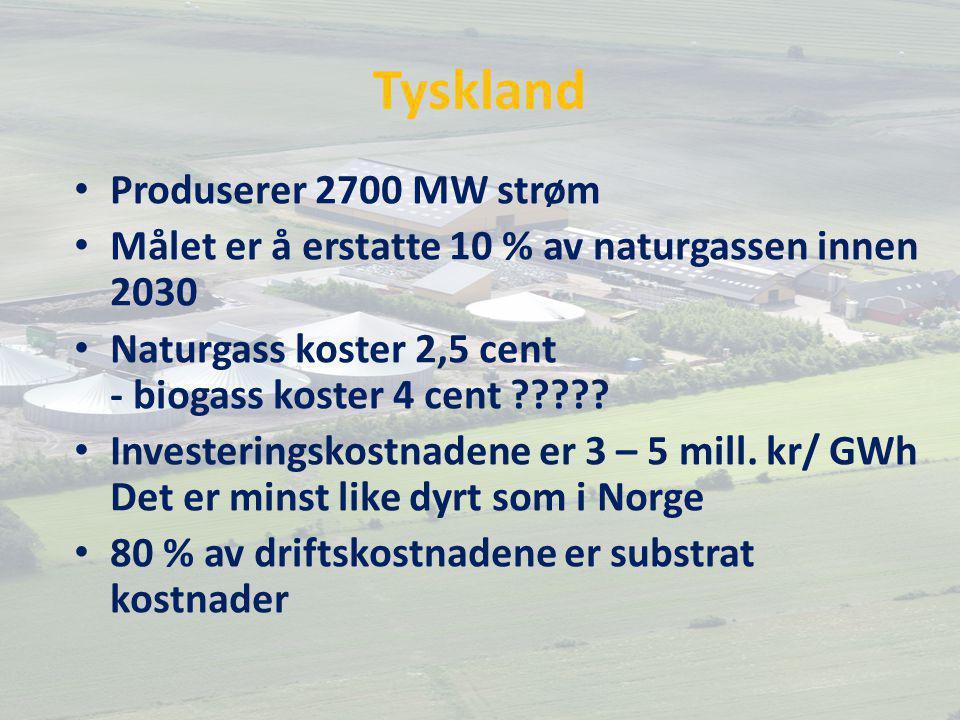 Tyskland Produserer 2700 MW strøm Målet er å erstatte 10 % av naturgassen innen 2030 Naturgass koster 2,5 cent - biogass koster 4 cent .