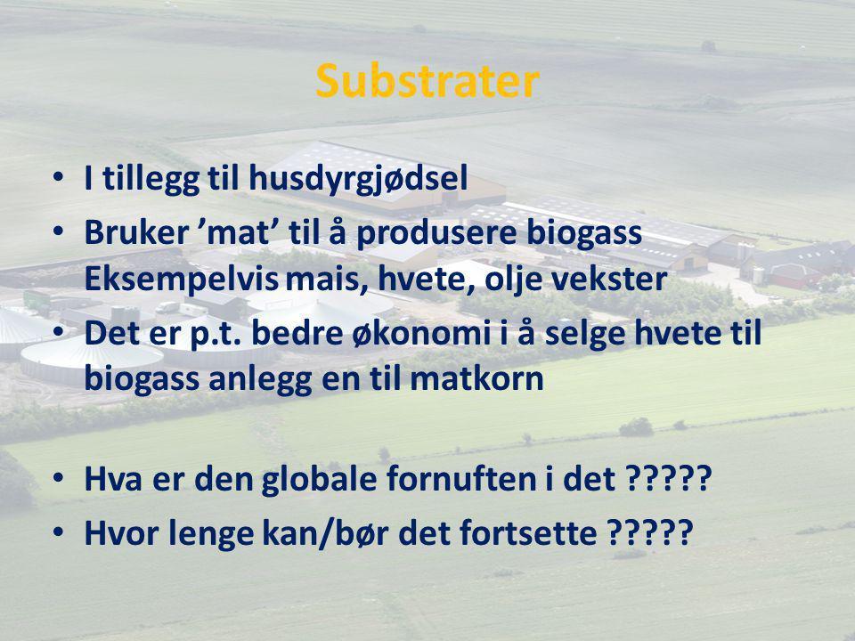 Substrater I tillegg til husdyrgjødsel Bruker 'mat' til å produsere biogass Eksempelvis mais, hvete, olje vekster Det er p.t.