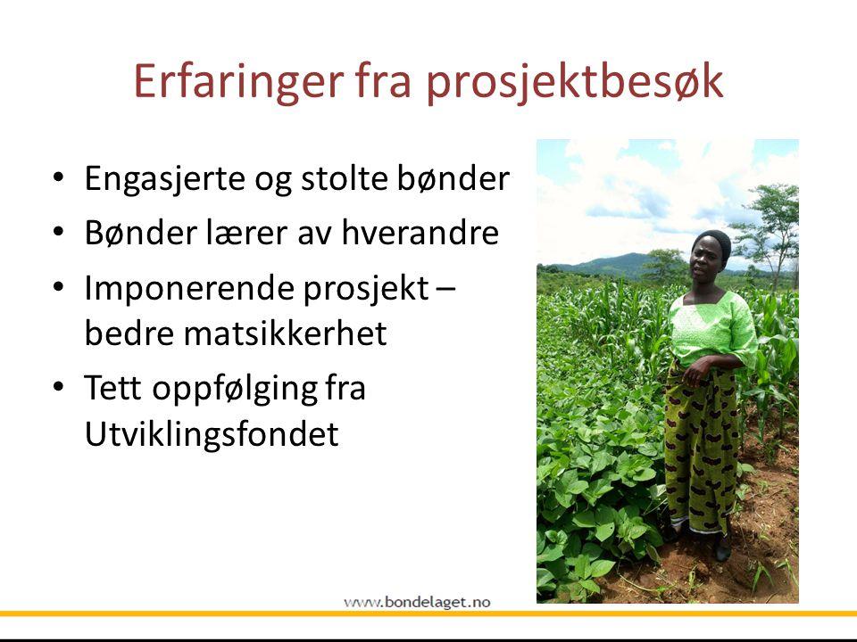 Erfaringer fra prosjektbesøk Engasjerte og stolte bønder Bønder lærer av hverandre Imponerende prosjekt – bedre matsikkerhet Tett oppfølging fra Utvik