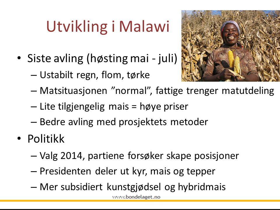 """Utvikling i Malawi Siste avling (høsting mai - juli) – Ustabilt regn, flom, tørke – Matsituasjonen """"normal"""", fattige trenger matutdeling – Lite tilgje"""