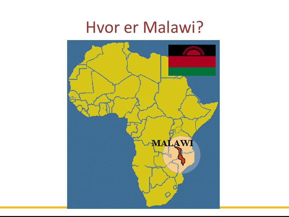 Fakta om Malawi Ca 16 millioner innbyggere Et av verdens fattigste land 40% av befolkningen lever for under 1 dollar om dagen Ca 80% er tilknyttet landbruk Landbruk = mat til familien Klimaendringer – kortere regntid