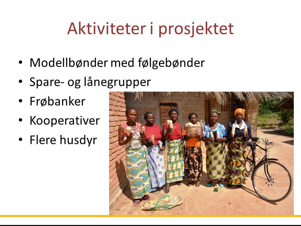 Aktiviteter i prosjektet Modellbønder med følgebønder Spare- og lånegrupper Frøbanker Kooperativer Flere husdyr
