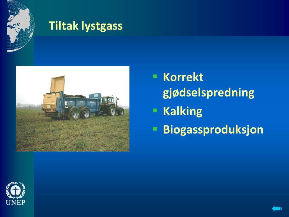 Tiltak lystgass  Korrekt gjødselspredning  Kalking  Biogassproduksjon