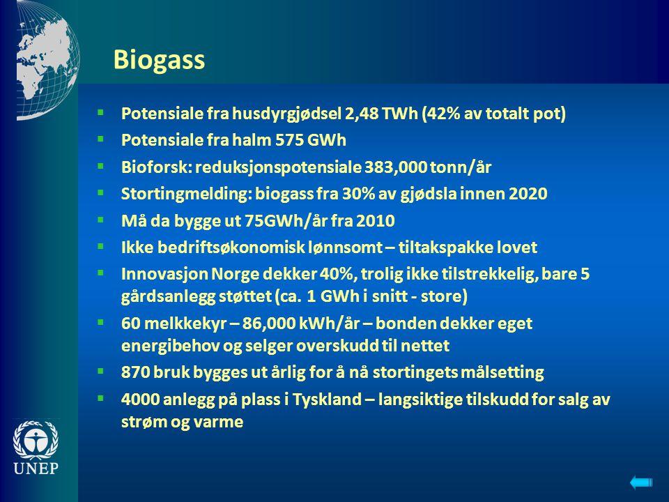 Biogass  Potensiale fra husdyrgjødsel 2,48 TWh (42% av totalt pot)  Potensiale fra halm 575 GWh  Bioforsk: reduksjonspotensiale 383,000 tonn/år  S