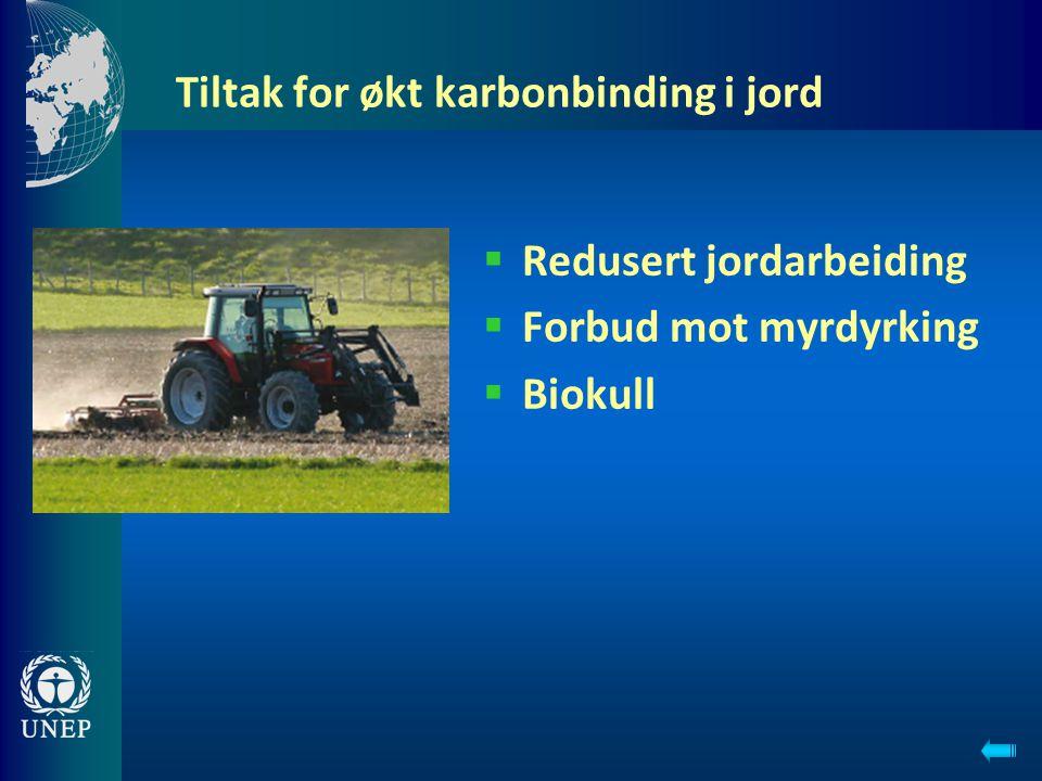 Tiltak for økt karbonbinding i jord  Redusert jordarbeiding  Forbud mot myrdyrking  Biokull