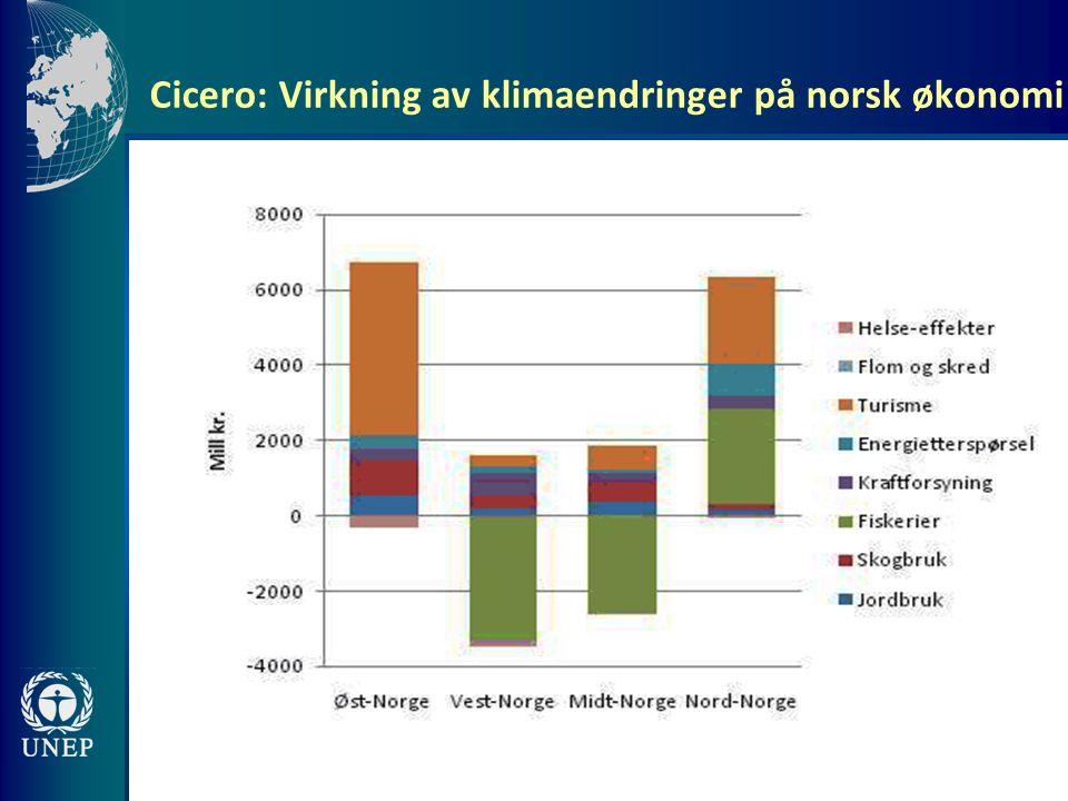 Cicero: Virkning av klimaendringer på norsk økonomi