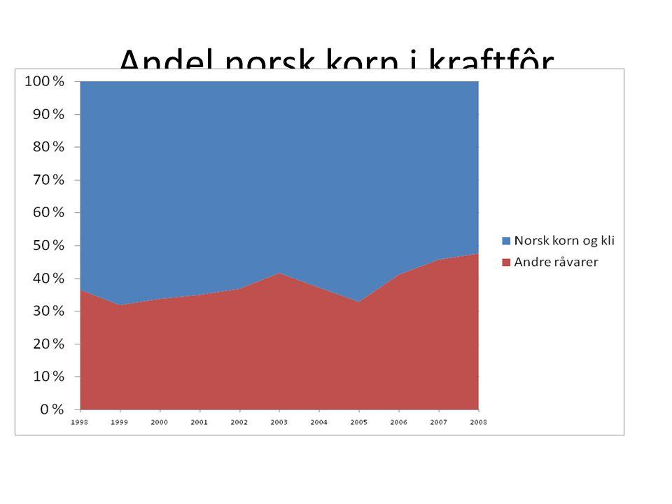 Andel norsk korn i kraftfôr