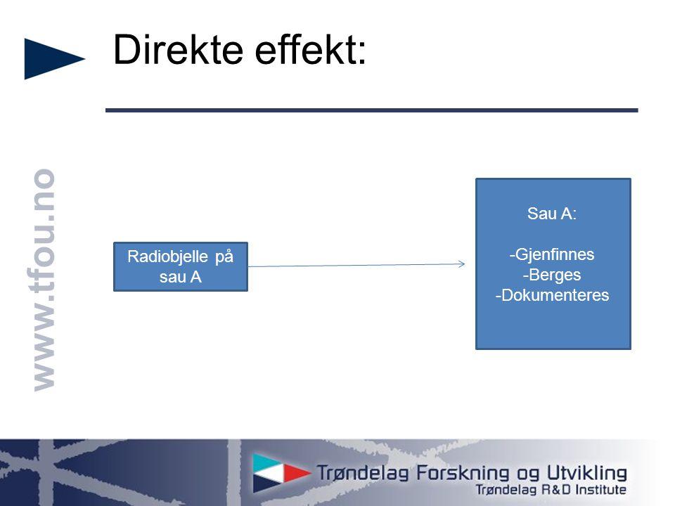 www.tfou.no Indirekte effekt: Radiobjelle på sau A Flokkdyr, finner flere i samme område Sau B, C osv -Gjenfinnes -Berges -Dokumenteres