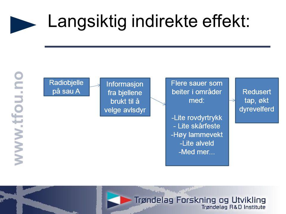 www.tfou.no Langsiktig indirekte effekt: Radiobjelle på sau A Informasjon fra bjellene brukt til å velge avlsdyr Flere sauer som beiter i områder med: