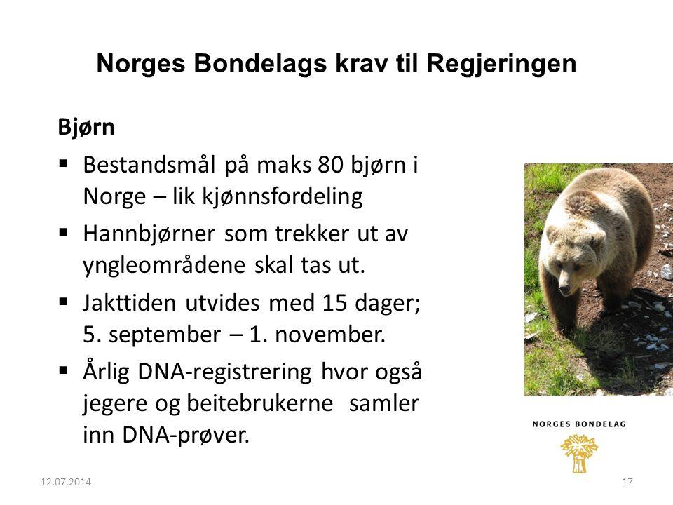 12.07.201417 Norges Bondelags krav til Regjeringen Bjørn  Bestandsmål på maks 80 bjørn i Norge – lik kjønnsfordeling  Hannbjørner som trekker ut av yngleområdene skal tas ut.