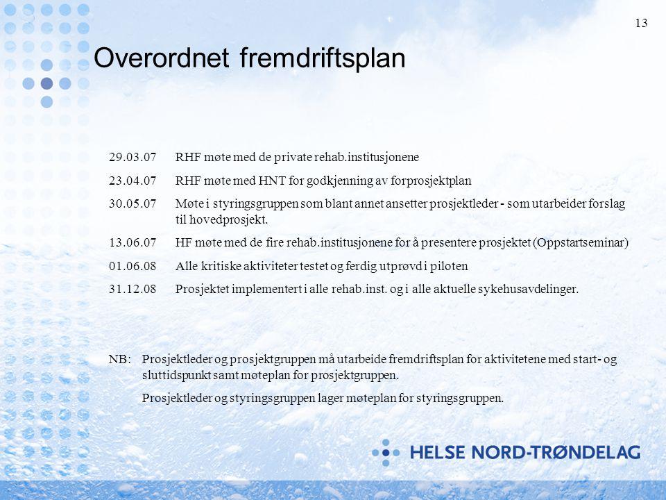 13 Overordnet fremdriftsplan 29.03.07RHF møte med de private rehab.institusjonene 23.04.07RHF møte med HNT for godkjenning av forprosjektplan 30.05.07