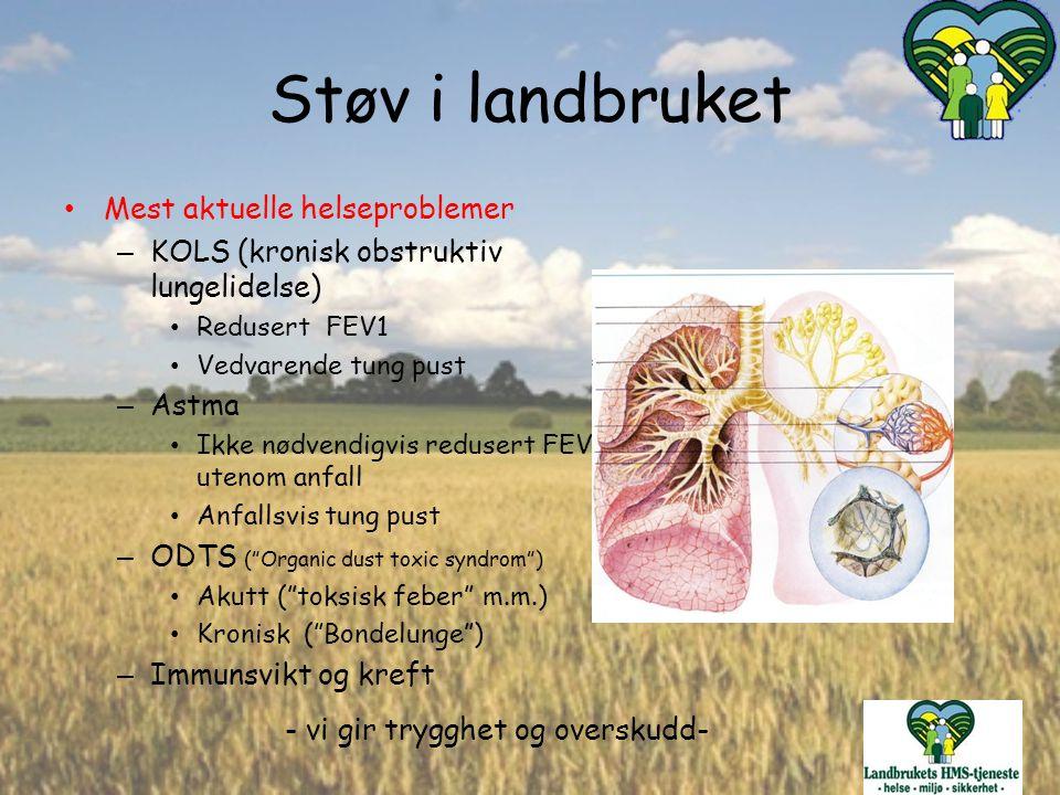 - vi gir trygghet og overskudd- Støv i landbruket Mest aktuelle helseproblemer – KOLS (kronisk obstruktiv lungelidelse) Redusert FEV1 Vedvarende tung