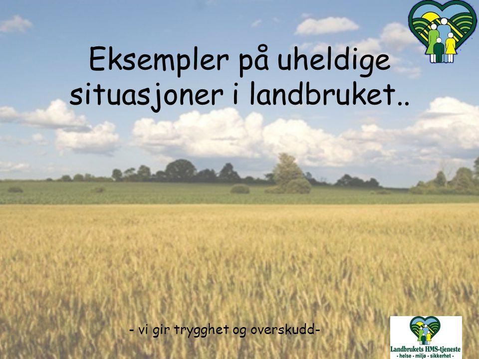 Eksempler på uheldige situasjoner i landbruket..