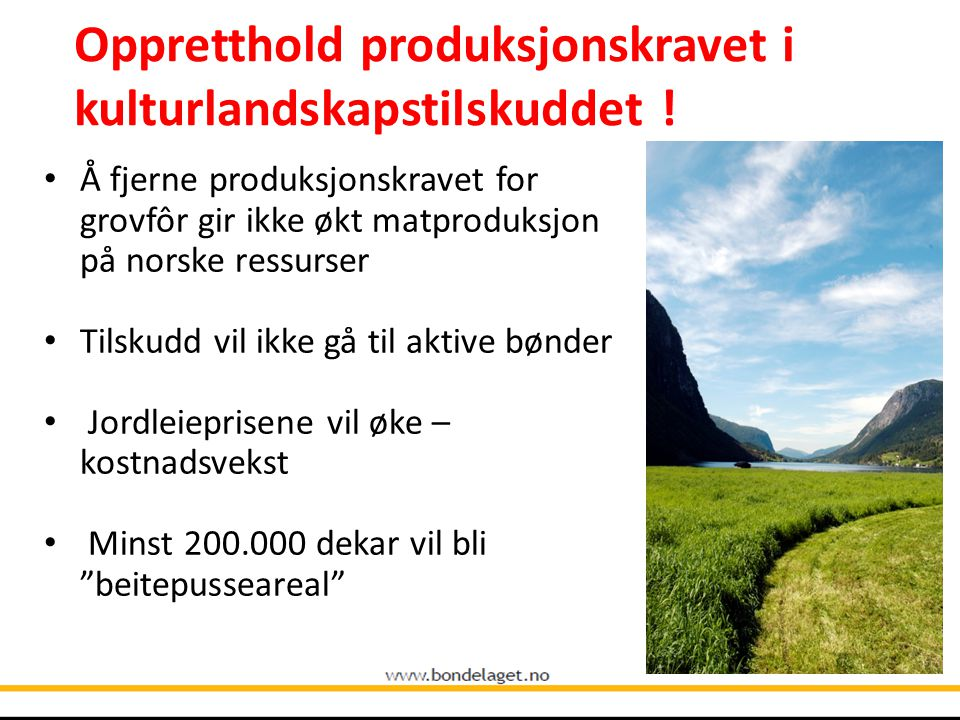 Norges Bondelag ber Stortingets næringskomité gi sin tilslutning til formuleringene om: Importvernet: Utnytte handlings- rommet.