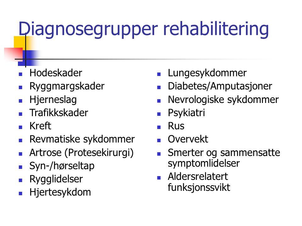 Diagnosegrupper rehabilitering Hodeskader Ryggmargskader Hjerneslag Trafikkskader Kreft Revmatiske sykdommer Artrose (Protesekirurgi) Syn-/hørseltap R