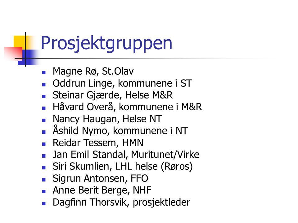 Prosjektgruppen Magne Rø, St.Olav Oddrun Linge, kommunene i ST Steinar Gjærde, Helse M&R Håvard Overå, kommunene i M&R Nancy Haugan, Helse NT Åshild N