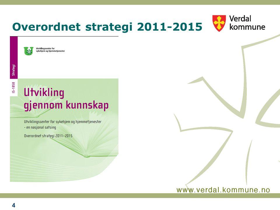 Overordnet strategi 2011-2015 4