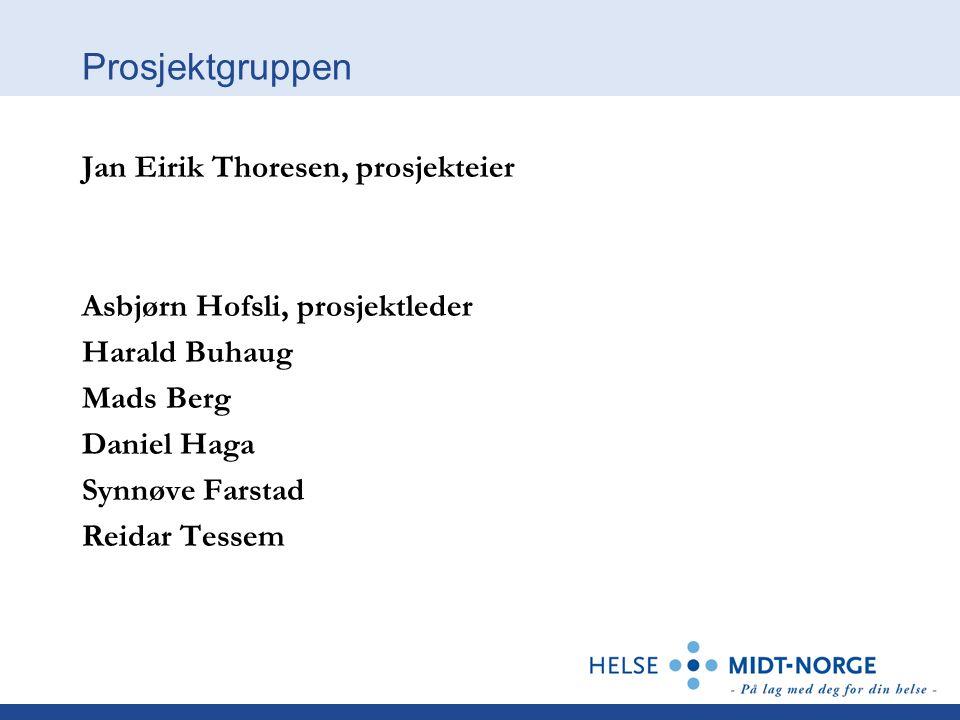 Prosjektgruppen Jan Eirik Thoresen, prosjekteier Asbjørn Hofsli, prosjektleder Harald Buhaug Mads Berg Daniel Haga Synnøve Farstad Reidar Tessem