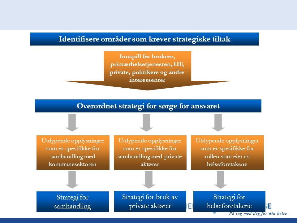 Identifisere områder som krever strategiske tiltak Utdypende opplysninger som er spesifikke for rollen som eier av helseforetakene Innspill fra brukere, primærhelsetjenesten, HF, private, politikere og andre interessenter Overordnet strategi for sørge for ansvaret Strategi for helseforetakene Utdypende opplysninger som er spesifikke for samhandling med private aktører Utdypende opplysninger som er spesifikke for samhandling med kommunesektoren Strategi for samhandling Strategi for bruk av private aktører