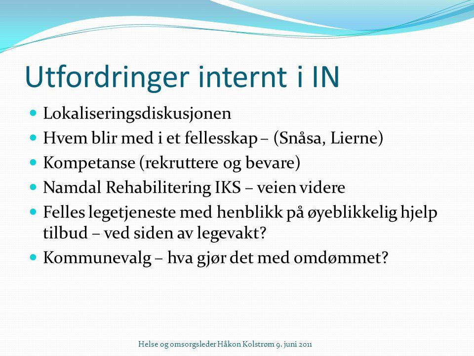 Utfordringer internt i IN Lokaliseringsdiskusjonen Hvem blir med i et fellesskap – (Snåsa, Lierne) Kompetanse (rekruttere og bevare) Namdal Rehabilite