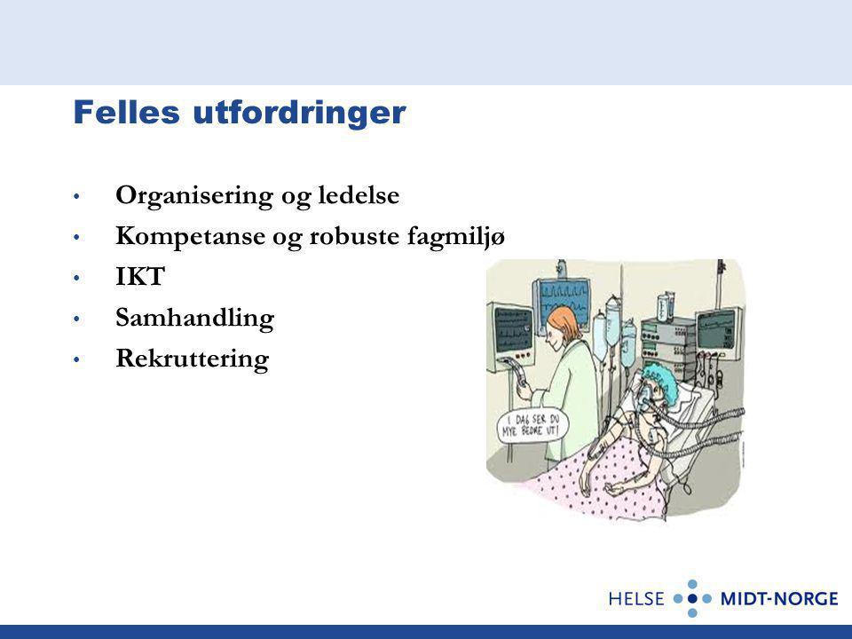 Felles utfordringer Organisering og ledelse Kompetanse og robuste fagmiljø IKT Samhandling Rekruttering