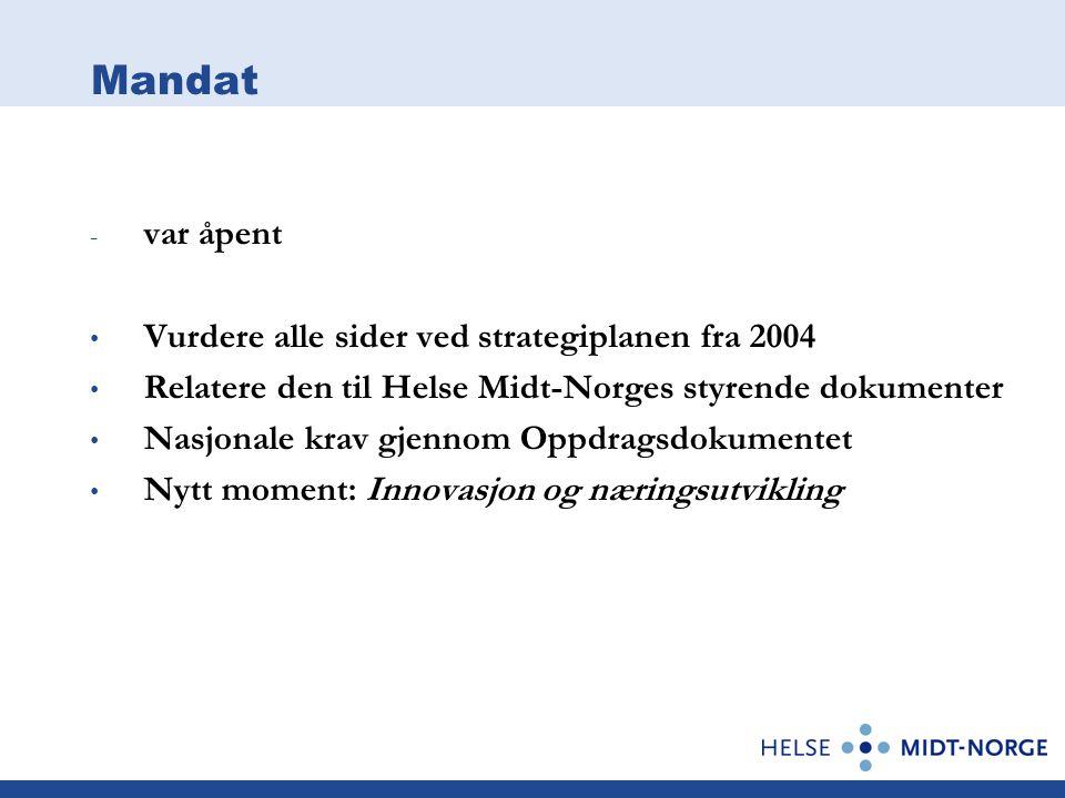 Mandat - var åpent Vurdere alle sider ved strategiplanen fra 2004 Relatere den til Helse Midt-Norges styrende dokumenter Nasjonale krav gjennom Oppdragsdokumentet Nytt moment: Innovasjon og næringsutvikling