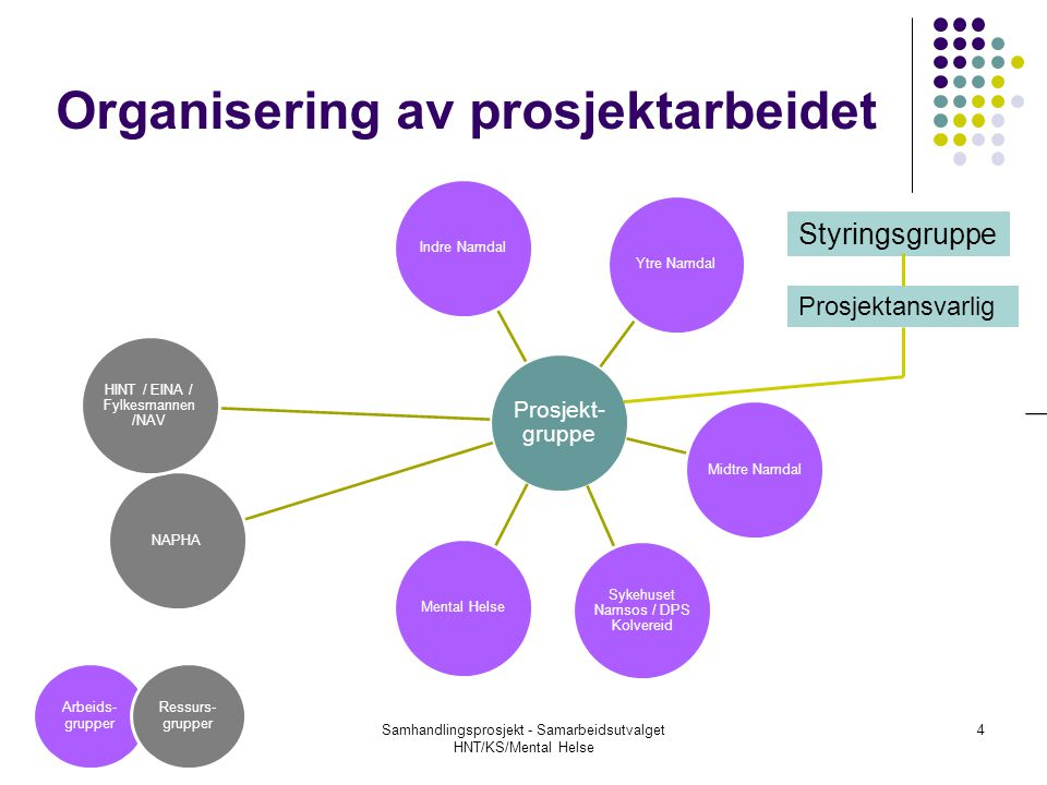 Organisering av prosjektarbeidet Prosjekt- gruppe Indre NamdalYtre NamdalMidtre Namdal Sykehuset Namsos / DPS Kolvereid Mental HelseNAPHA HINT / EINA