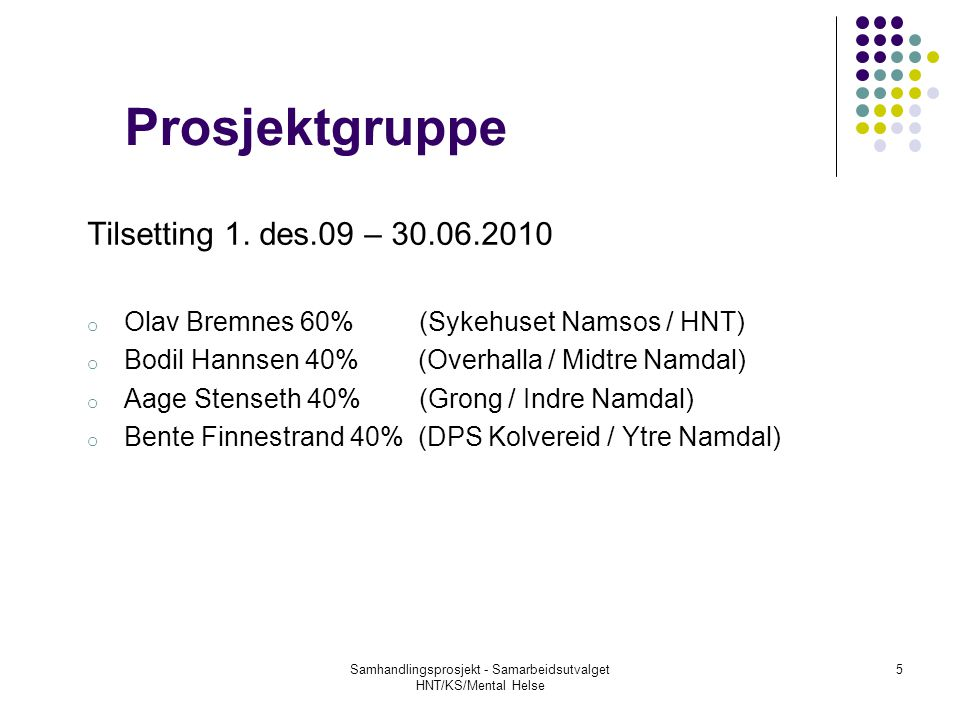 Prosjektgruppe Tilsetting 1. des.09 – 30.06.2010 o Olav Bremnes 60% (Sykehuset Namsos / HNT) o Bodil Hannsen 40% (Overhalla / Midtre Namdal) o Aage St