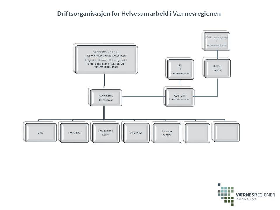 STYRINGSGRUPPE: Etatssjefer og kommuneoverleger I Stjørdal, Meråker, Selbu og Tydal (8 faste personer + evt.