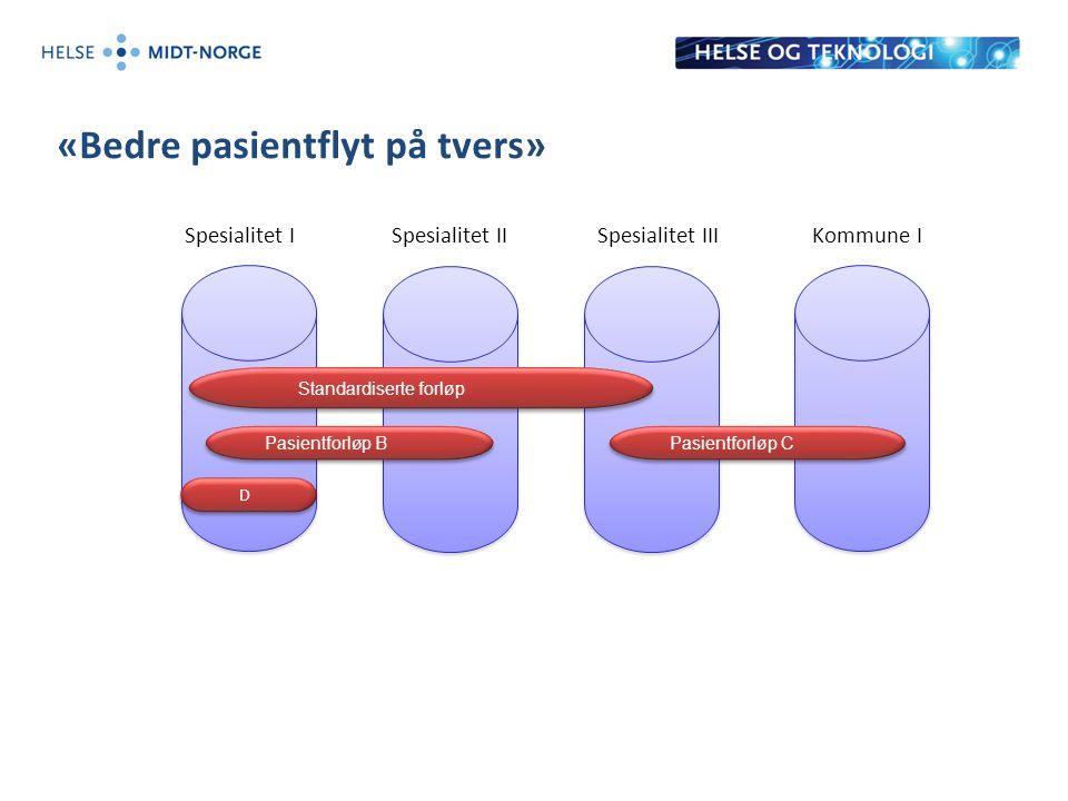 «Bedre pasientflyt på tvers» Spesialitet ISpesialitet IISpesialitet IIIKommune I Standardiserte forløp Pasientforløp B Pasientforløp C D D