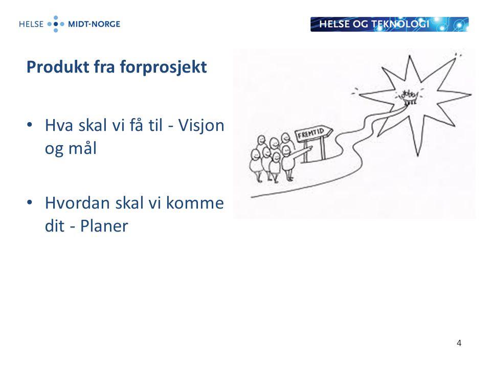 Produkt fra forprosjekt Hva skal vi få til - Visjon og mål Hvordan skal vi komme dit - Planer 4