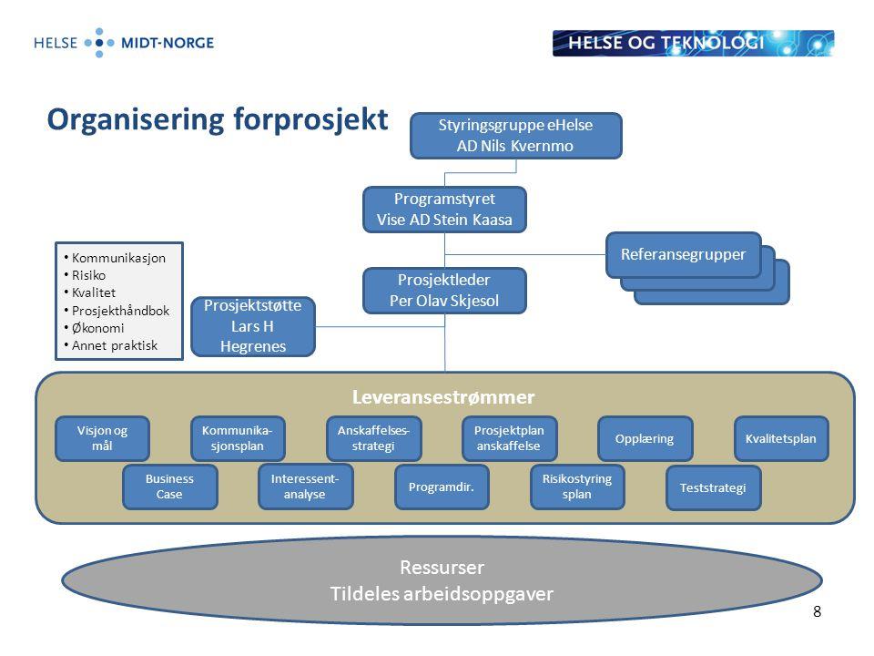 Organisering forprosjekt 8 Referansegrupper Leveransestrømmer Prosjektleder Per Olav Skjesol Visjon og mål Opplæring Business Case Kommunika- sjonspla