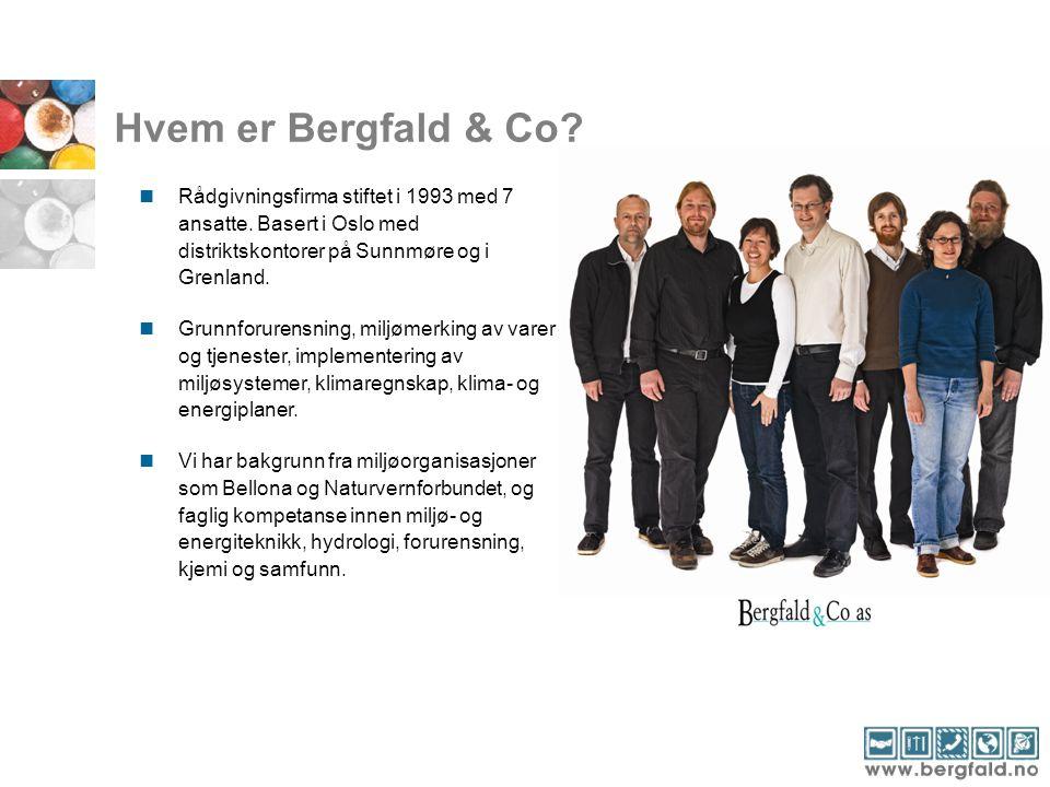 Hvem er Bergfald & Co? Rådgivningsfirma stiftet i 1993 med 7 ansatte. Basert i Oslo med distriktskontorer på Sunnmøre og i Grenland. Grunnforurensning