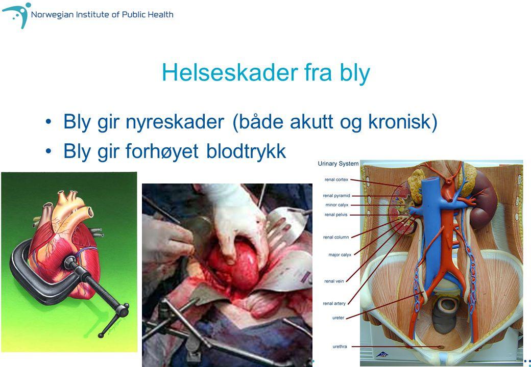Farlig avfall 2009 - NORSAS, 16. sept. 18 Helseskader fra bly Bly gir nyreskader (både akutt og kronisk) Bly gir forhøyet blodtrykk