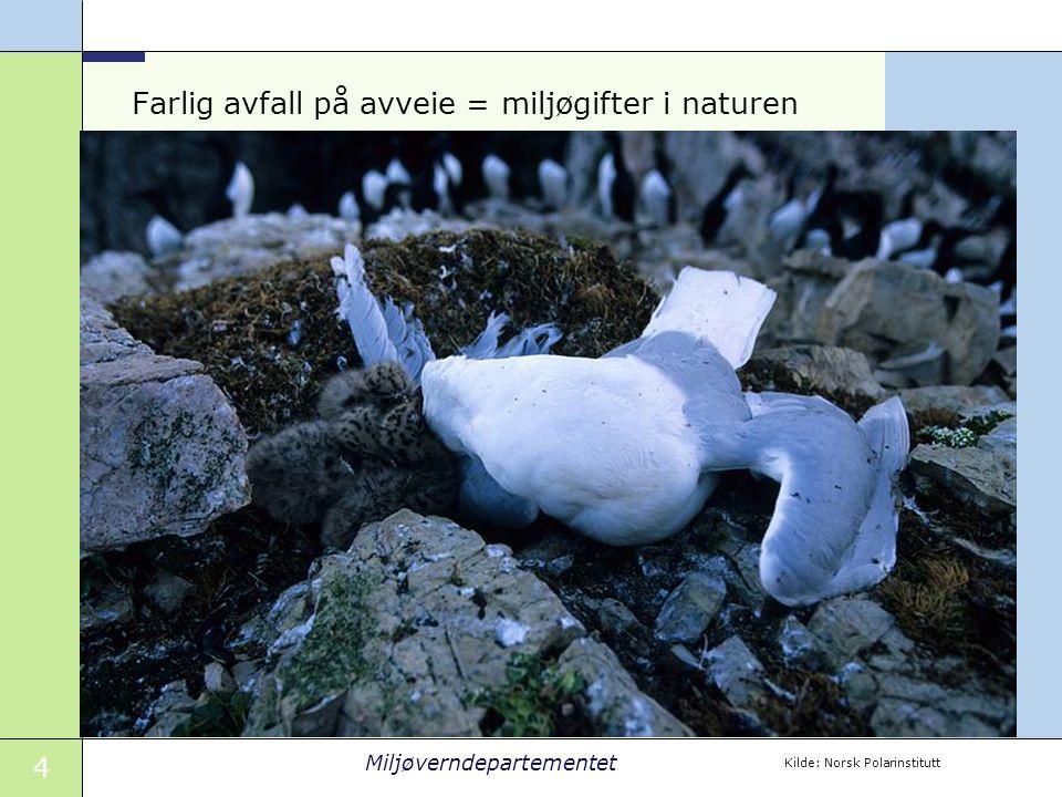 4 Miljøverndepartementet Farlig avfall på avveie = miljøgifter i naturen Kilde: Norsk Polarinstitutt