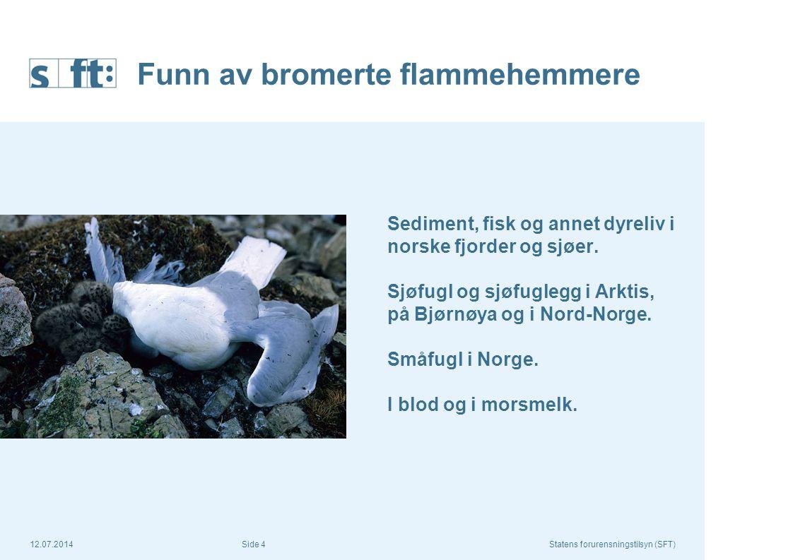 12.07.2014Statens forurensningstilsyn (SFT) Side 4 Funn av bromerte flammehemmere Sediment, fisk og annet dyreliv i norske fjorder og sjøer. Sjøfugl o
