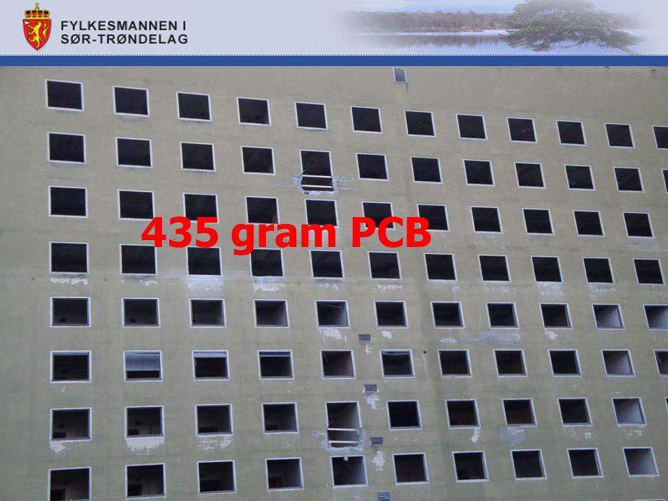 435 gram PCB