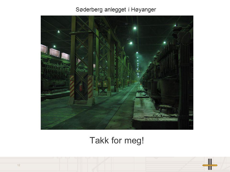 12 Takk for meg! Søderberg anlegget i Høyanger