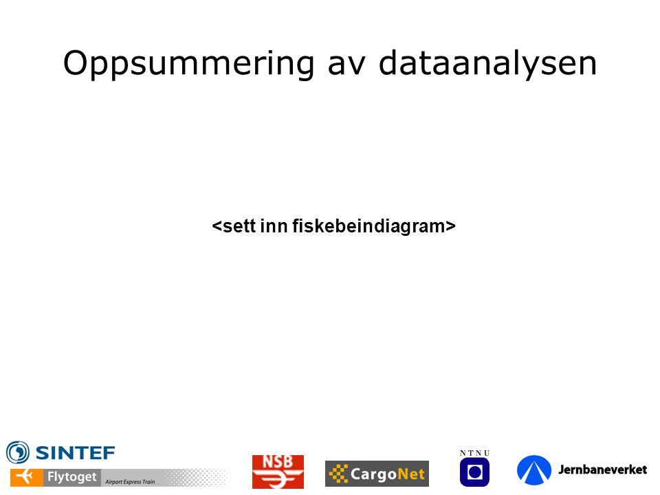 Oppsummering av dataanalysen
