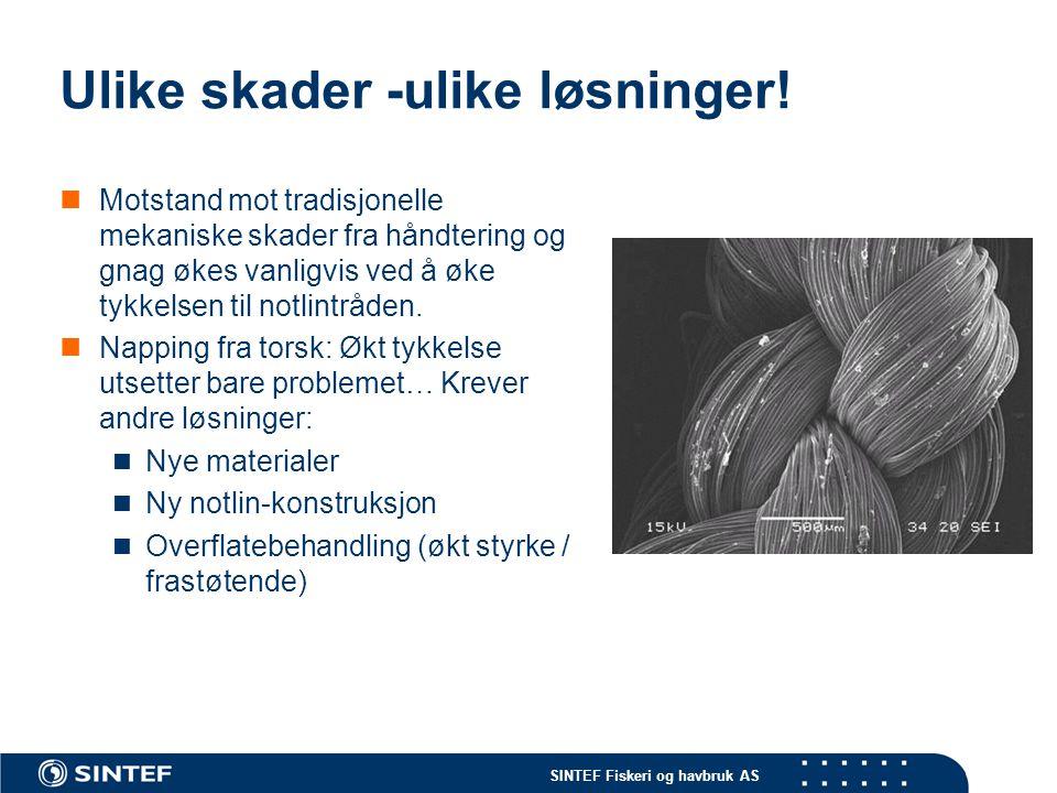 SINTEF Fiskeri og havbruk AS Ulike skader -ulike løsninger.
