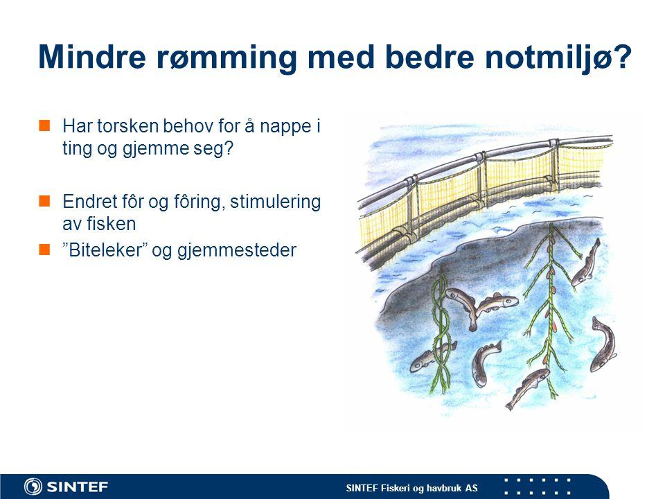 SINTEF Fiskeri og havbruk AS Mindre rømming med bedre notmiljø.