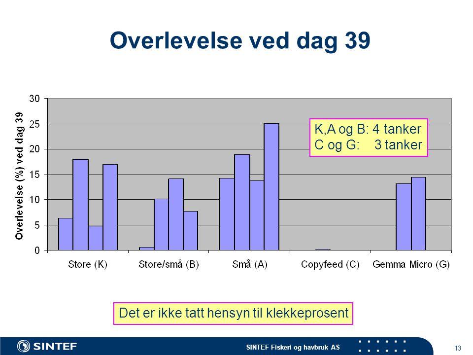 SINTEF Fiskeri og havbruk AS 13 Overlevelse ved dag 39 K,A og B: 4 tanker C og G: 3 tanker Det er ikke tatt hensyn til klekkeprosent