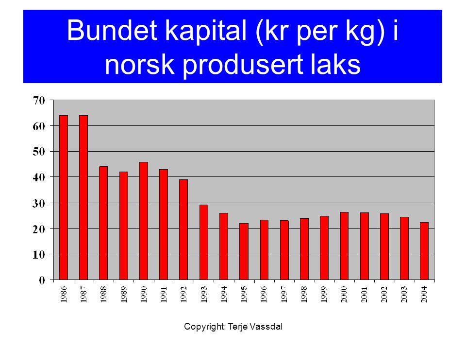 Copyright: Terje Vassdal Bundet kapital (kr per kg) i norsk produsert laks