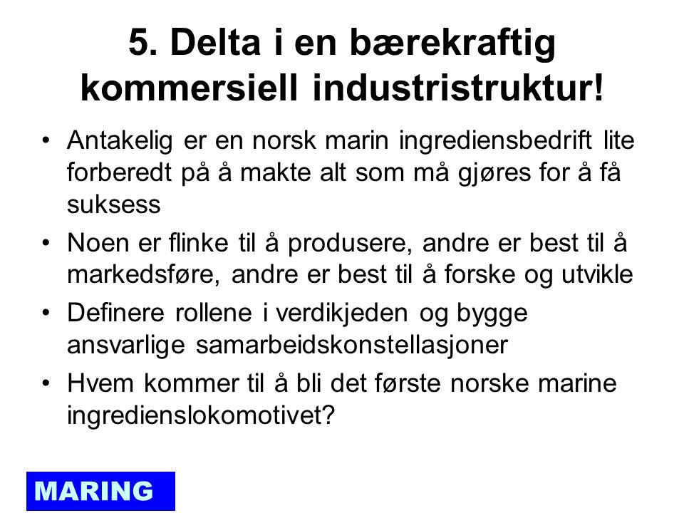 MARING 5. Delta i en bærekraftig kommersiell industristruktur.