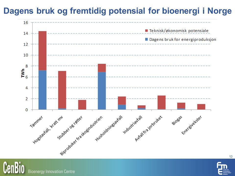 Dagens bruk og fremtidig potensial for bioenergi i Norge 13