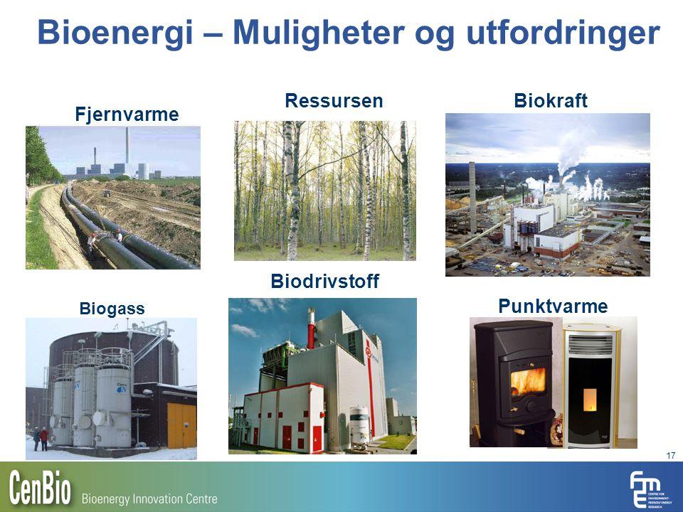 17 Bioenergi – Muligheter og utfordringer Biodrivstoff Biokraft Punktvarme Biogass Fjernvarme Ressursen