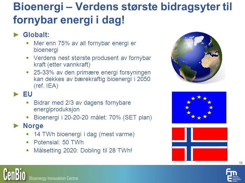 18 Bioenergi – Verdens største bidragsyter til fornybar energi i dag! ► Globalt:  Mer enn 75% av all fornybar energi er bioenergi  Verdens nest stør