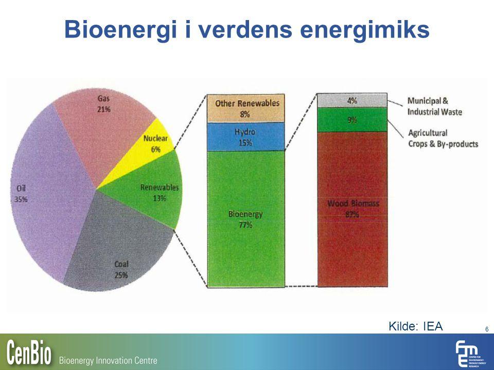 Bioenergi i verdens energimiks 6 Kilde: IEA