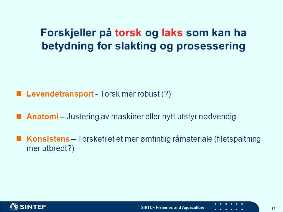 SINTEF Fisheries and Aquaculture 13 Forskjeller på torsk og laks som kan ha betydning for slakting og prosessering Levendetransport - Torsk mer robust