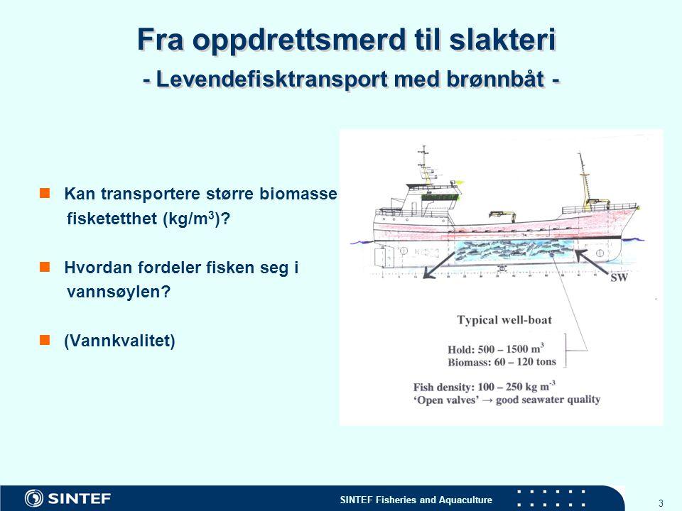 SINTEF Fisheries and Aquaculture 3 Fra oppdrettsmerd til slakteri - Levendefisktransport med brønnbåt - Kan transportere større biomasse fisketetthet